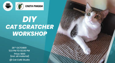 DIY Cat Scratcher Workshop