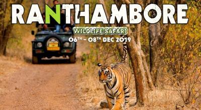 Ranthambore Jungle Safari | Travel Trikon