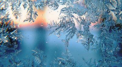 Winter is Coming: Understanding Patterns in Nature