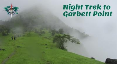 Night Trek to Garbett point
