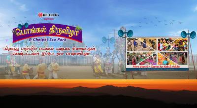 Pongal Thiruvizha @ Chetpet Eco Park