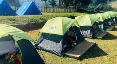 T H C Camp Sessions