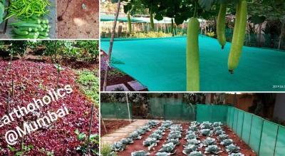 Organic Kitchen & Composting Workshop