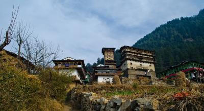 Jibhi Road Trip