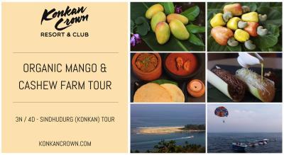 Organic Mango & Cashew Farm Tour in Sindhudurg
