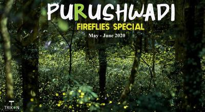 Purushwadi Fireflies Special | Trikon
