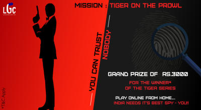 Mission: Tiger on the prowl – a fun online puzzle solving game