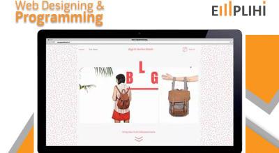 Web Designing & Programming by EMPLIHI