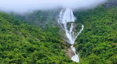 Dudhsagar Waterfalls Trek & Camping | NammaTrip