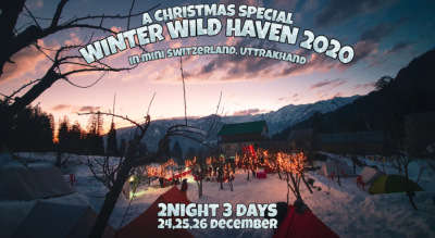 Winter Wild Haven 2020(A Christmas Special)
