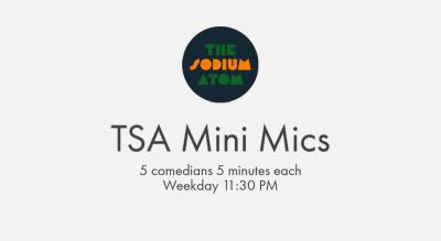 TSA MINI MICS