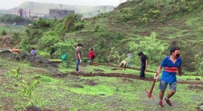 Volunteer to help repair contour bunds in Taloja hill forest