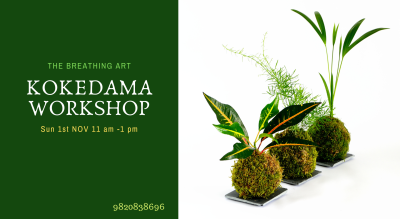 1st Nov Kokedama Workshop
