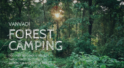 Vanvadi Forest Camping | Wildlife - Forest Food - Rock Pool |