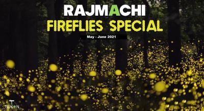 Rajmachi Fireflies Special Trek and Camp 2021 | T Trikon