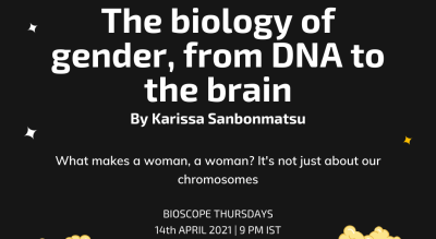 TED Talk Screening: The biology of gender, from DNA to the brain by Karissa Sanbonmatsu
