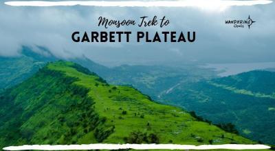 Monsoon Trek to Garbett Plateau
