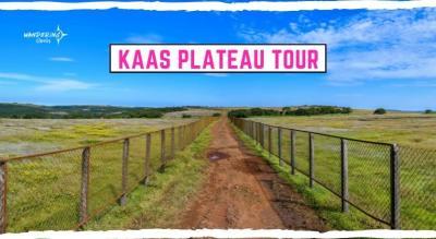 Kaas Plateau Tour   Wandering Souls
