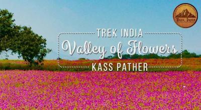 KASS PLATEAU (VALLEY OF FLOWERS)- Trek India