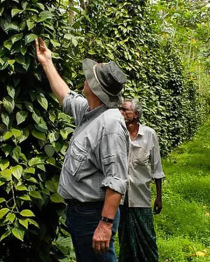 Wandertrails | Spice Plantation Tour And Lunch In Munnar