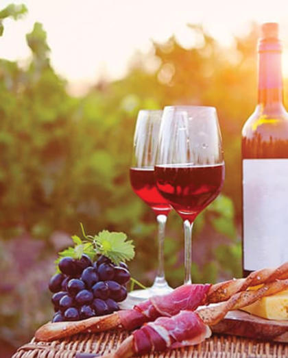 Wine tour and Brunch