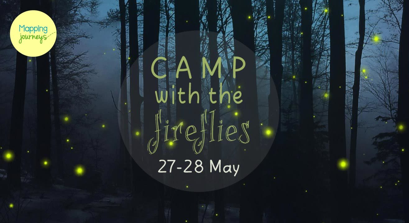 Camping With The Fireflies