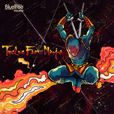 Twelve Foot Ninja India Tour October '17