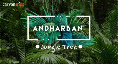 Trek to Andharban (The Dark Forest)