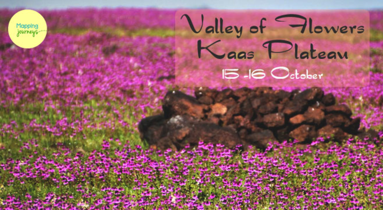 Offbeat Tour to Kaas Plateau