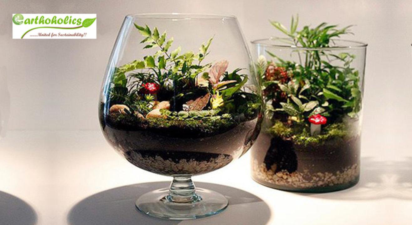 Terrarium (Miniature Gardening) Workshop by Earthoholics