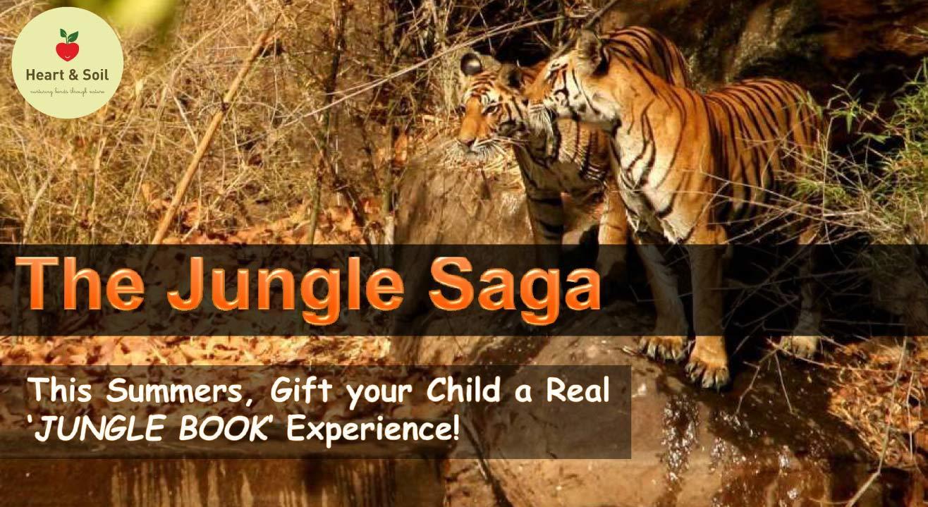 The Jungle Saga @ Pench National Park