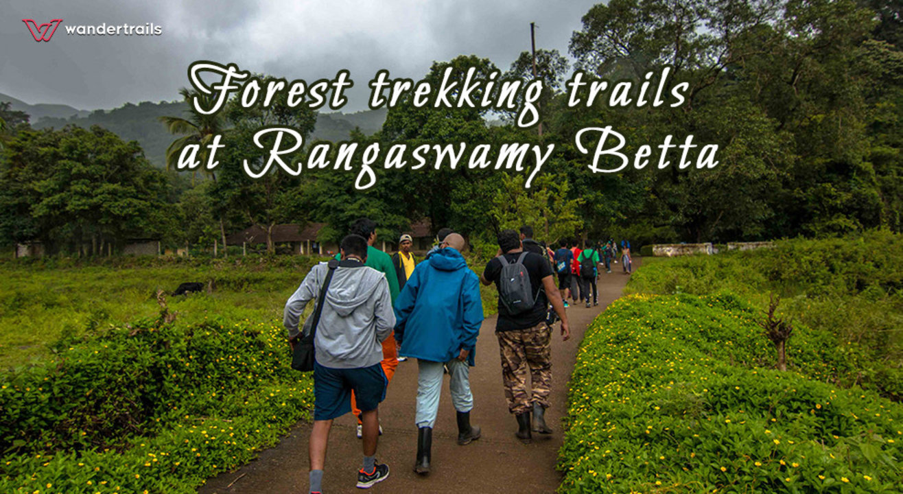 Forest trekking trails at Rangaswamy Betta