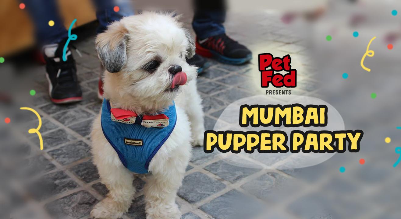 Mumbai Pupper Party