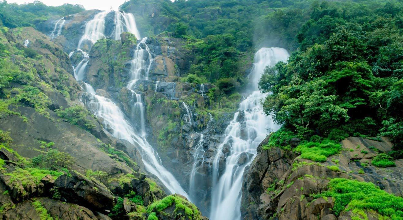 Dudhsagar Waterfall & Jungle Trek