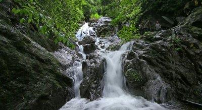Monsoon Delight at Vagamon - Waterfall Trek & Camping