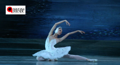 "Navrasa Duende Presents Tchaikovsky's ""Swan Lake"""