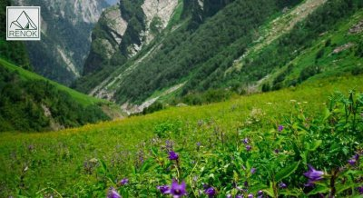 Valley of Flowers |  Renok Adventures