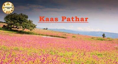 Kaas Pathar
