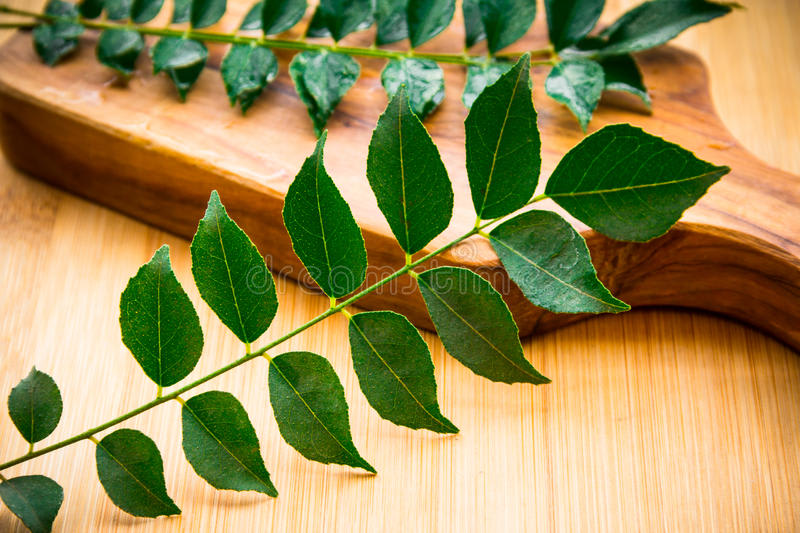 Storing curry leaves