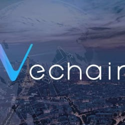 VeChain (VET) Price Prediction 2019 - Lower Than This And