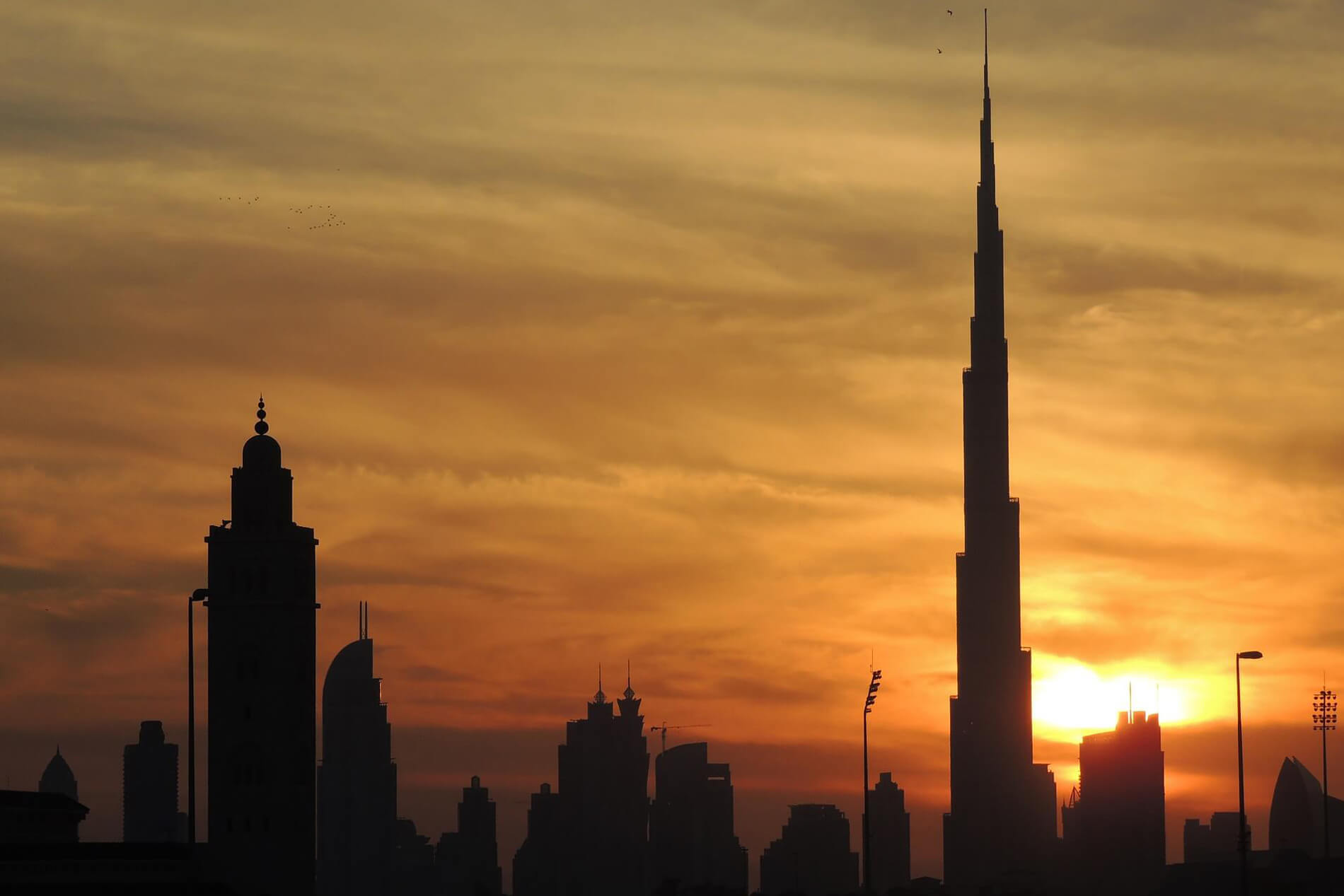 The Rise of Arab Startups