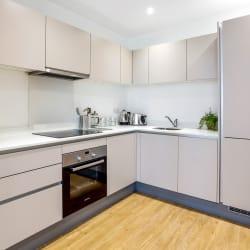Apartment 147 Kitchen View