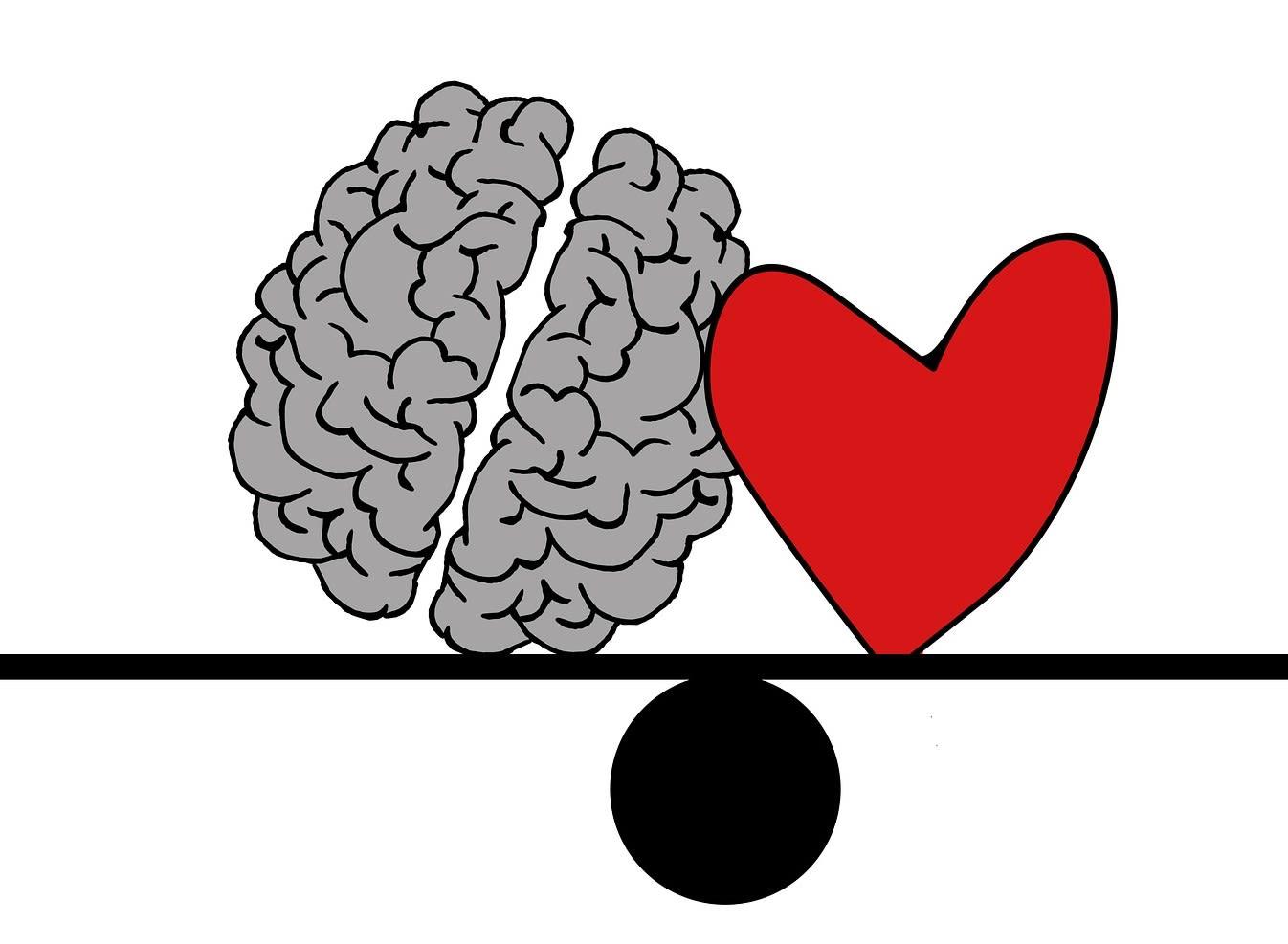 Hjerne og hjerte.jpg