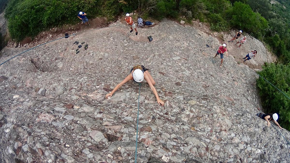 Climbing discovery in Montserrat – Gastrolonia