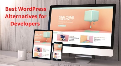 Best WordPress Alternatives for Developers