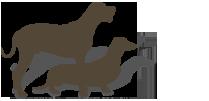 Fresh Wild boar package image