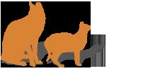 Cat & kitten chicken package image