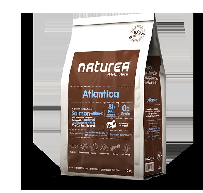 Atlantica package image