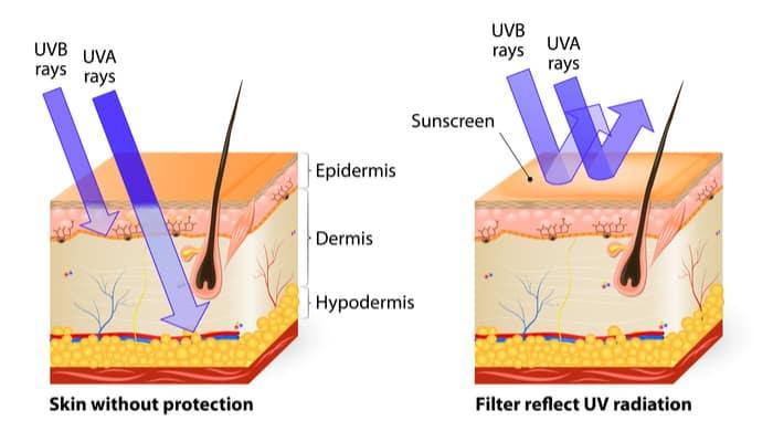 UV rays from sun to skin
