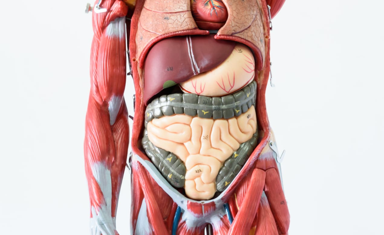 Managing Functional Dyspepsia: This Gastroenterologist Shares Tips undefined